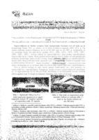 prikaz prve stranice dokumenta Supravodljivost i suprafluidnost - uz Nobelovu nagradu za fiziku 2003. g.