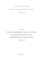 prikaz prve stranice dokumenta Utjecaj mikrobiote miša na jetreni metabolizam N-butil-N-(4-hidroksibutil)-nitrozamina